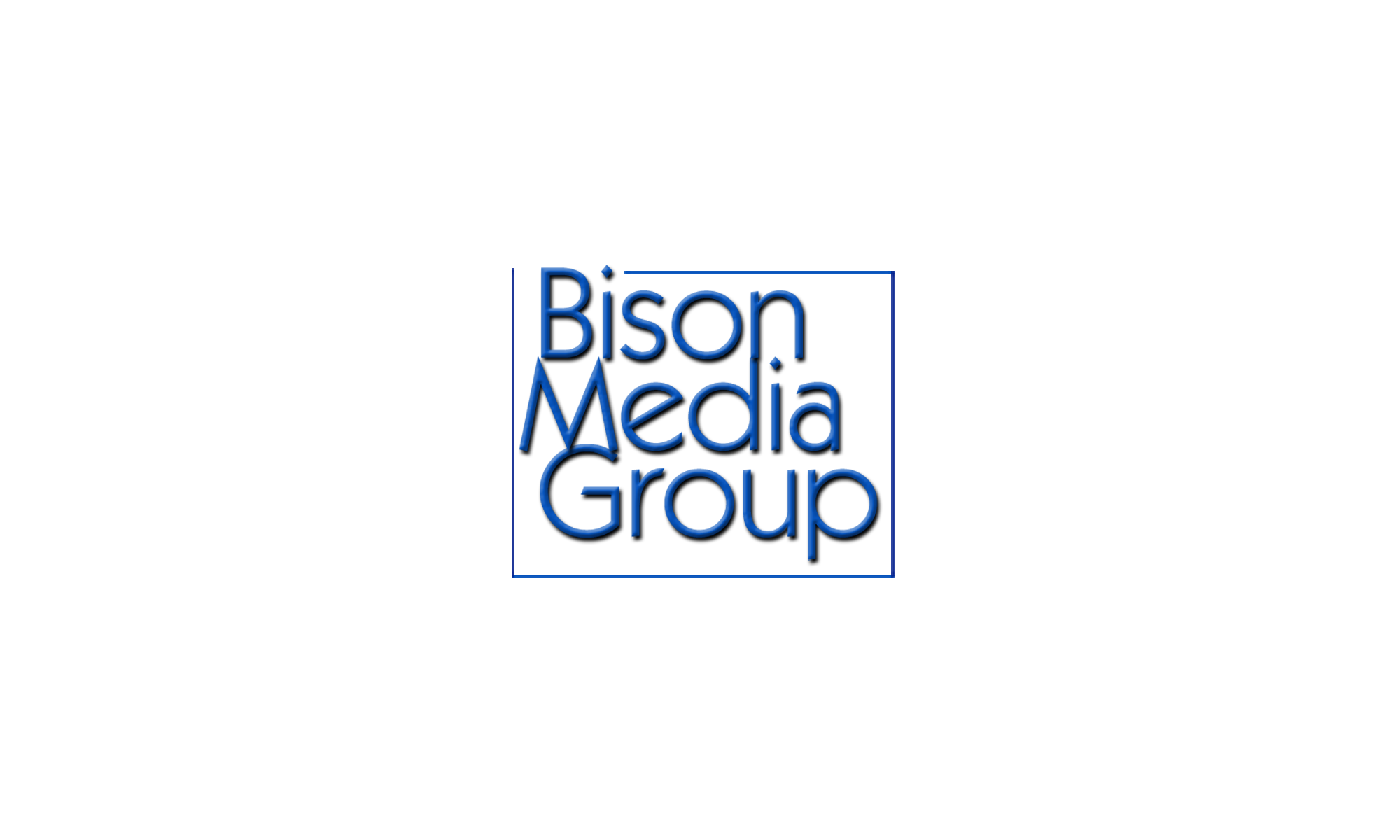 Bison Media Group Digital Marketing Agency